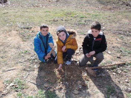 Plantando Árbol