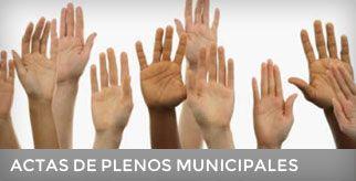 Actas de Plenos Municipales